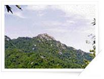 대암산 천연보호구역